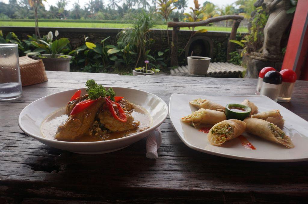 Le repas est servi - Loempia Nasi Goreng et Poulet au curry Balinais ; un vrai régal.