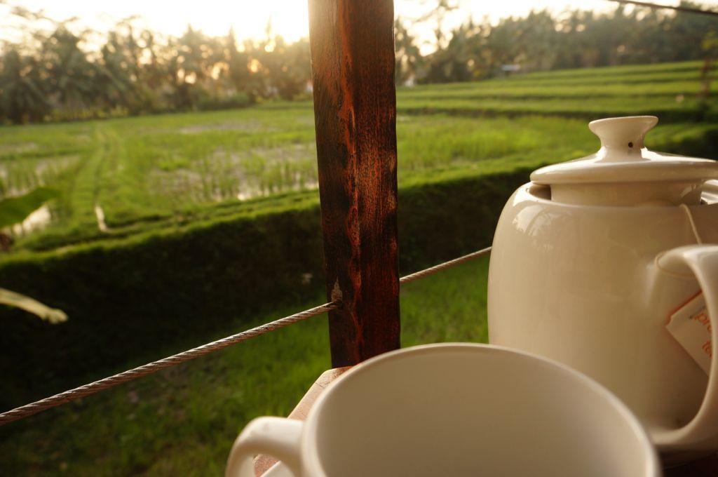 de retour à l'hôtel, on nous offre une tasse de thé accompagné de délices aux bananes servis dans la chambre, on est bien choyés
